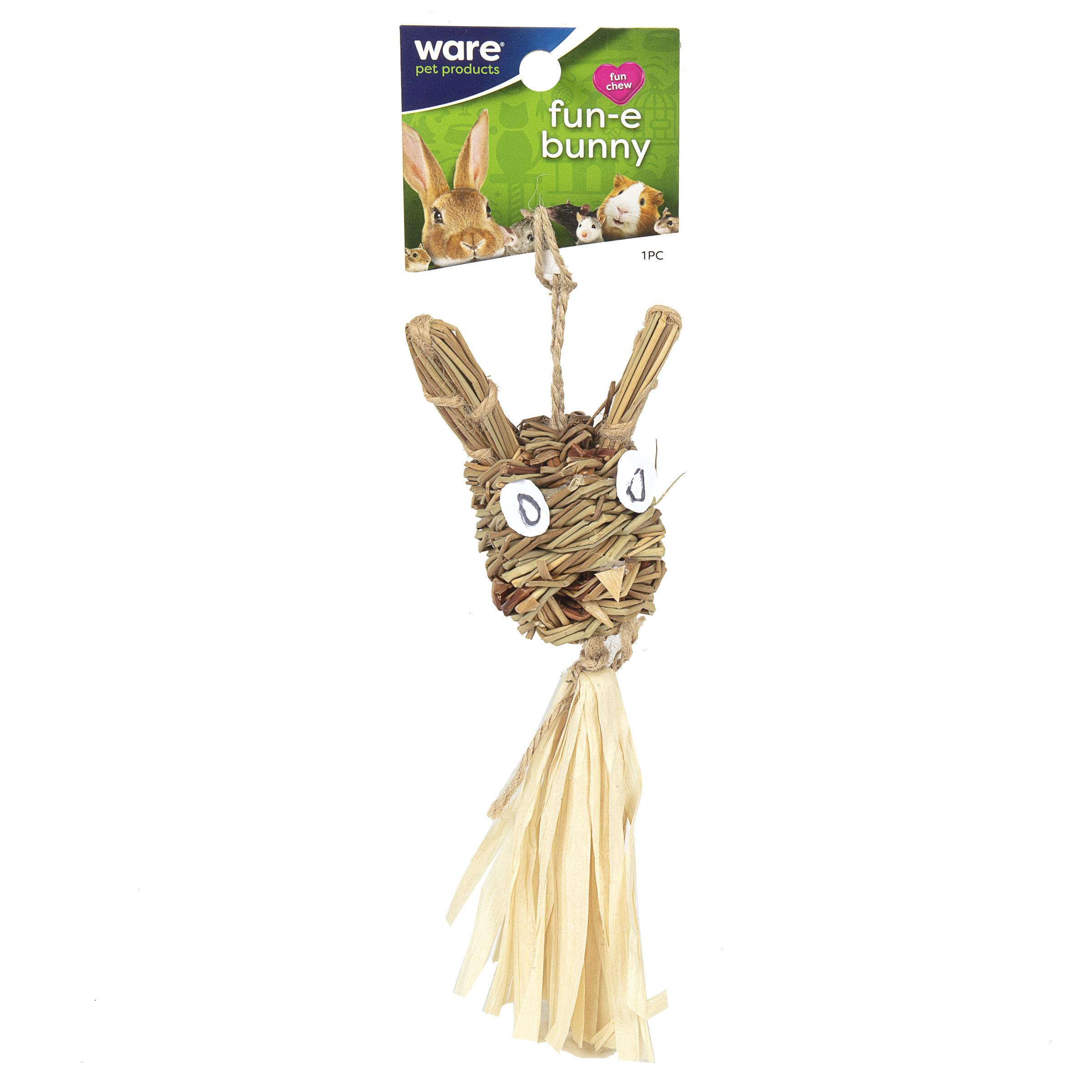 Fun-E-Bunny