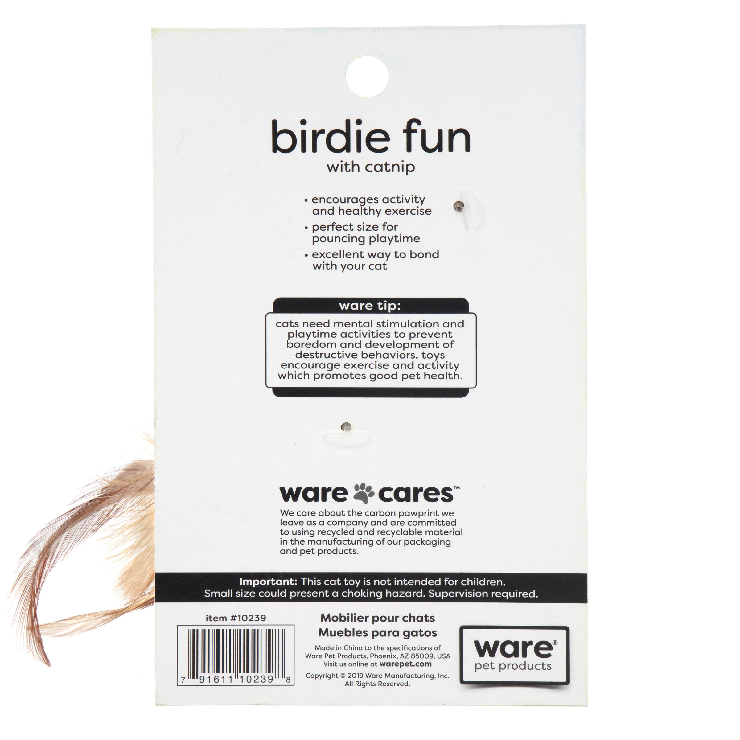Birdie Fun