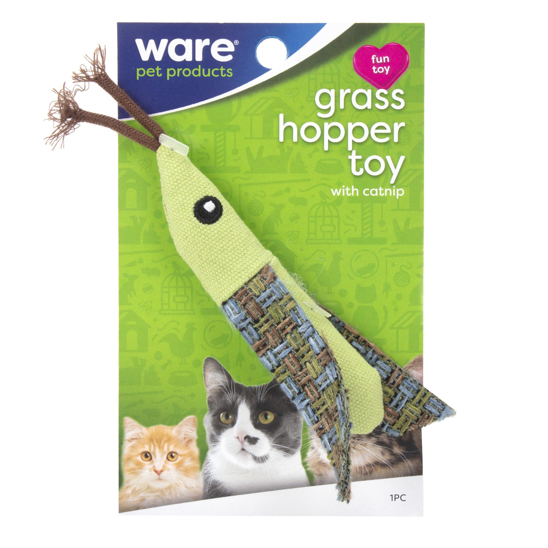 Grasshopper Toy