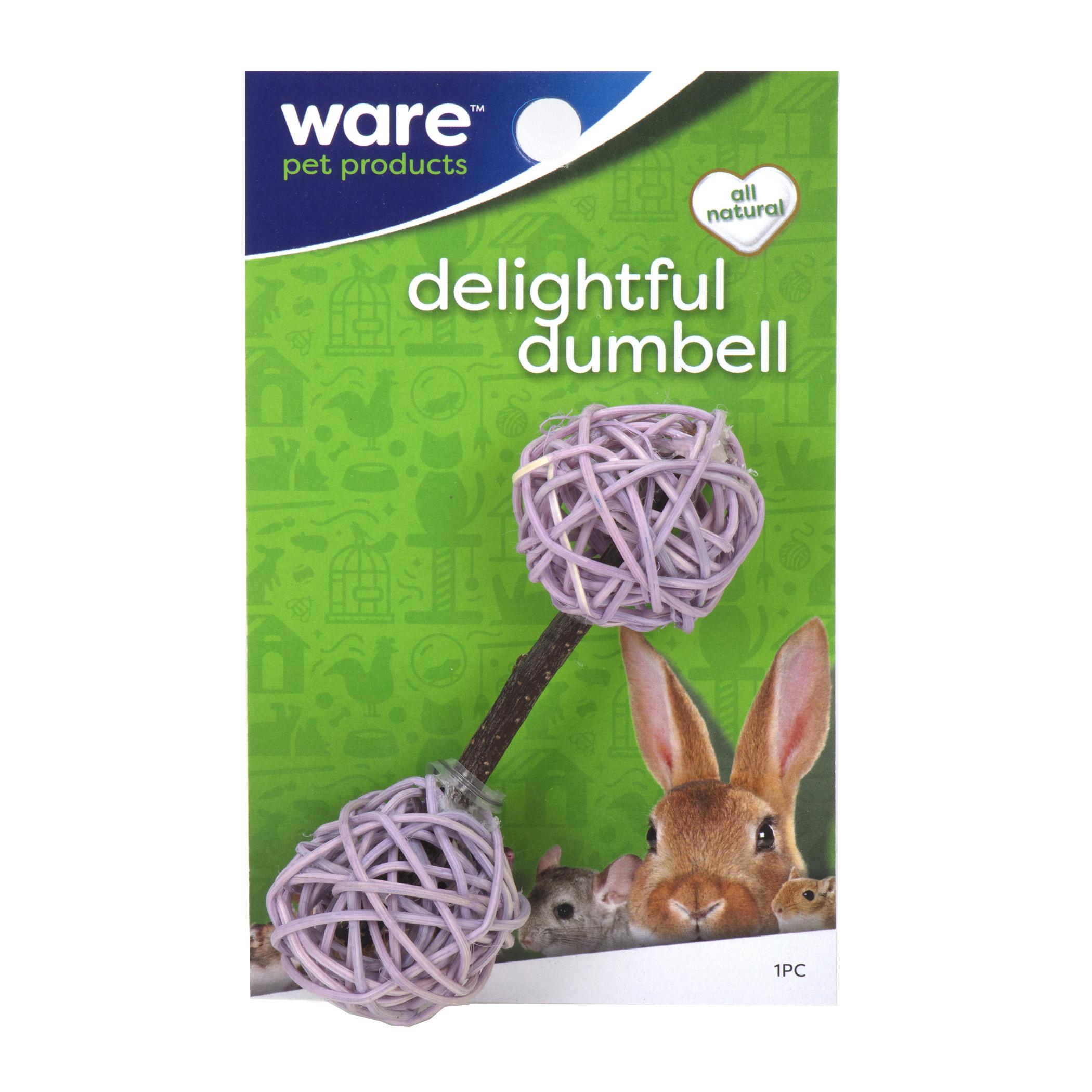 Delightful Dumbbell