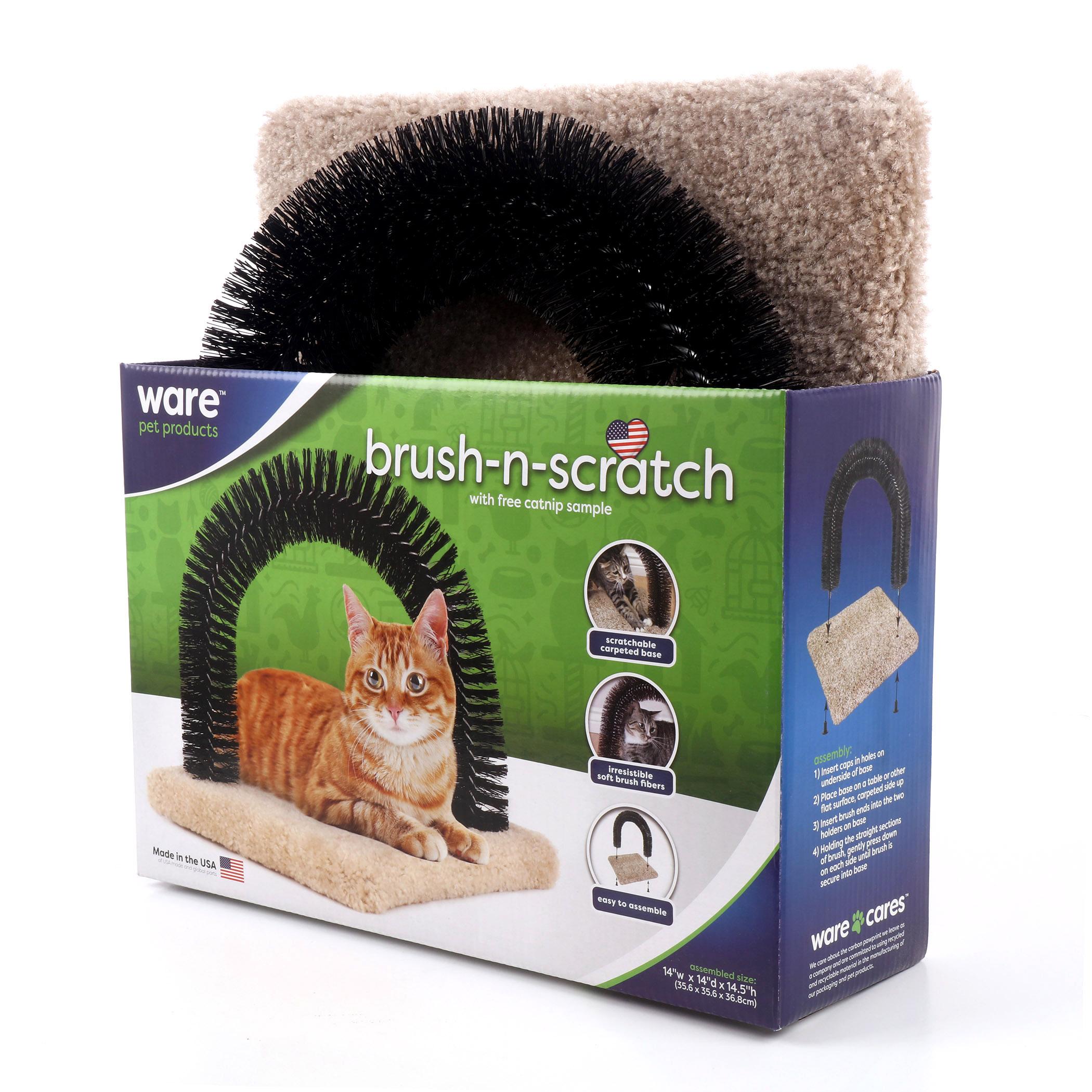 Brush-N-Scratch