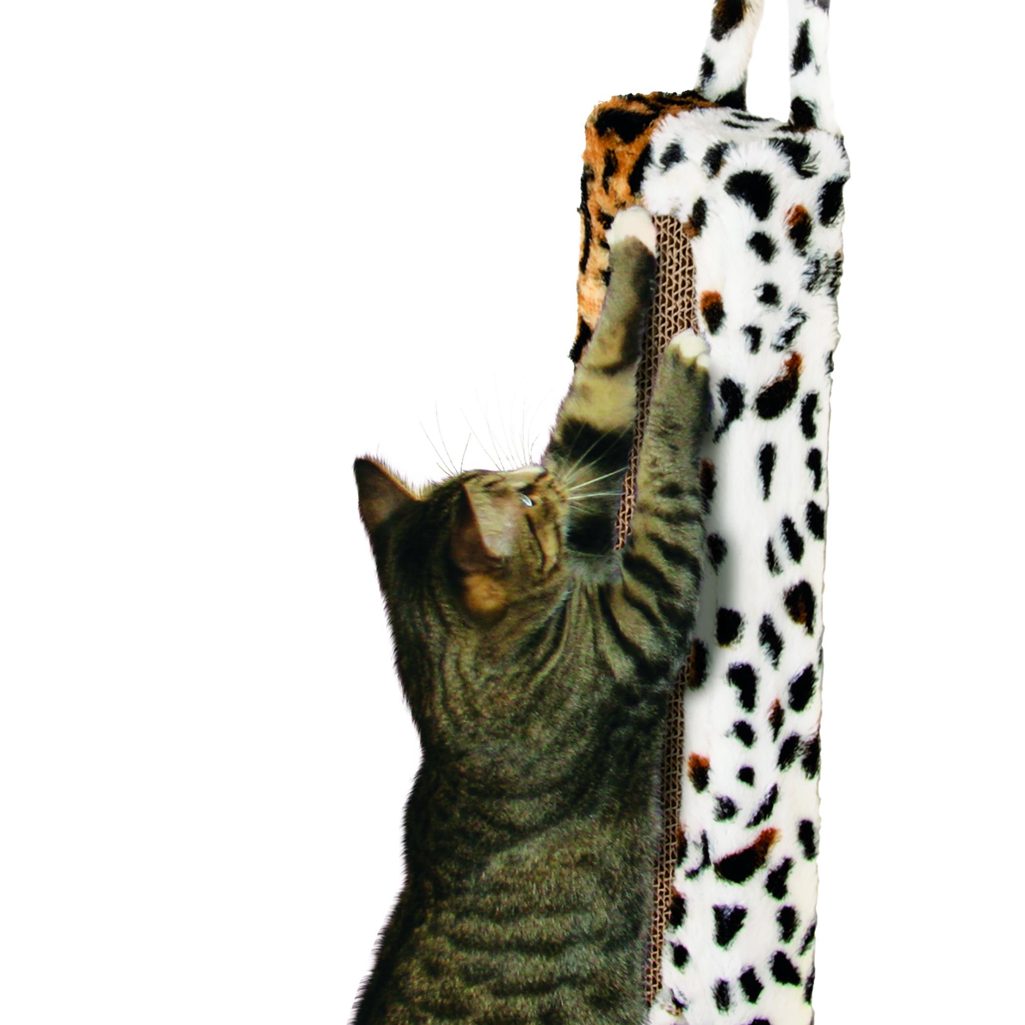 Wildcat Door Hanger
