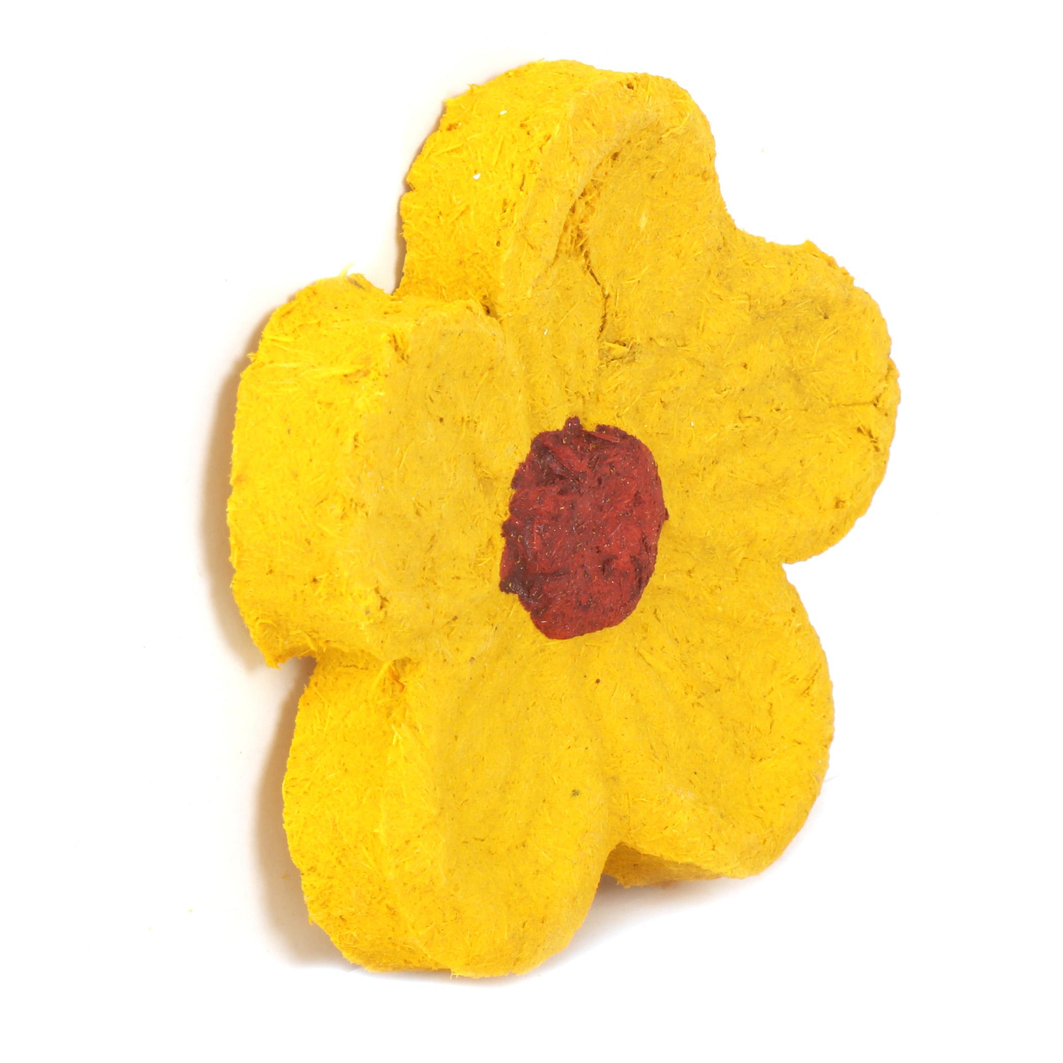 Krunchy Sunflower