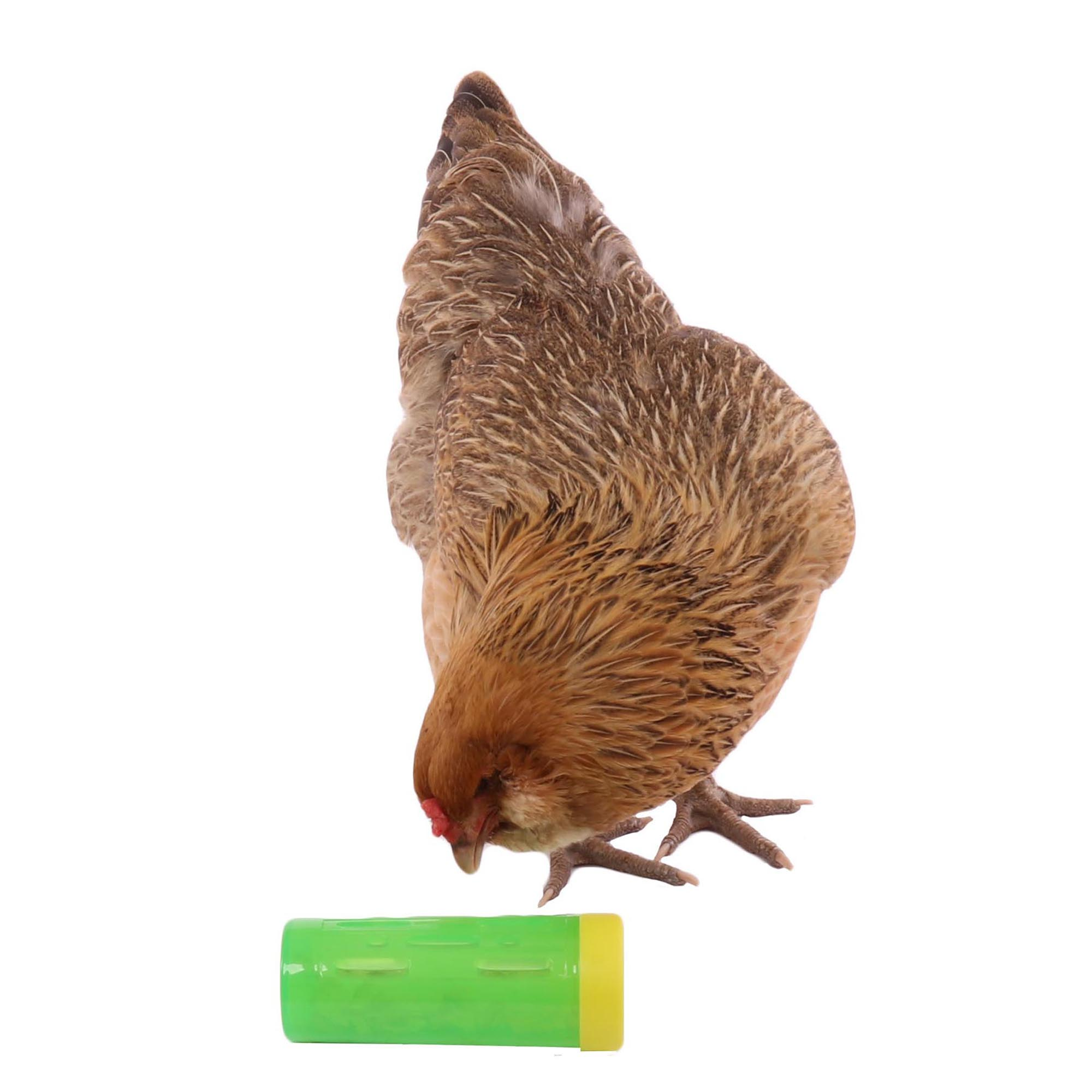 Chicken Treat Roller