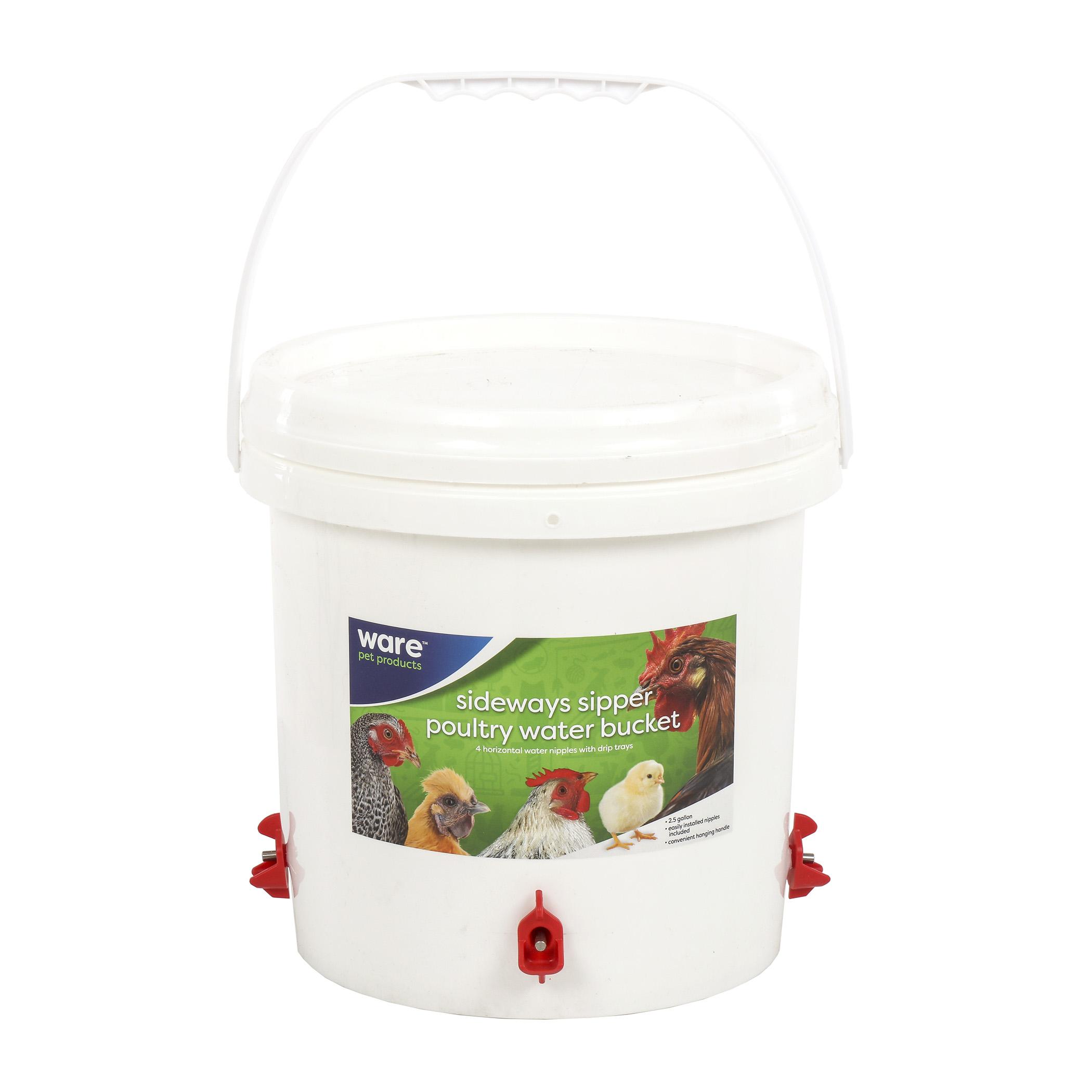 Sideways Sipper Poultry Water
