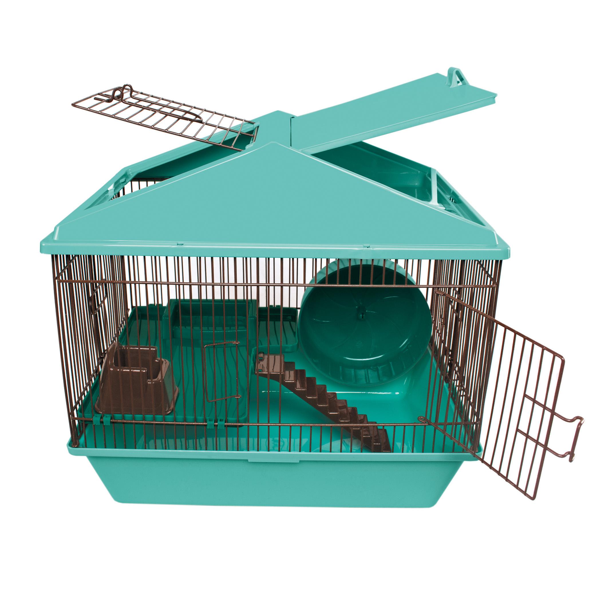 Animal House 16